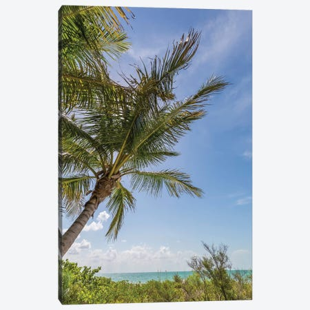Ocean breeze Canvas Print #MEV276} by Melanie Viola Canvas Artwork