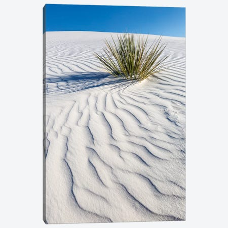 White Sands Dune 3-Piece Canvas #MEV288} by Melanie Viola Canvas Wall Art