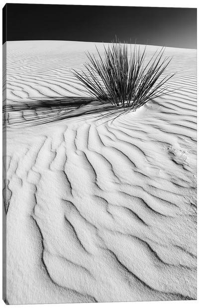White Sands Dune In Black & White Canvas Art Print