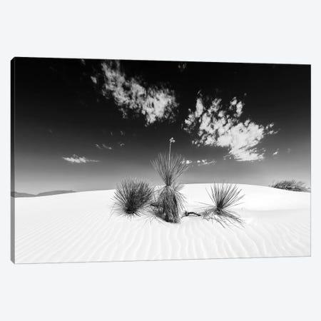 White Sands Scenery | Monochrome Canvas Print #MEV337} by Melanie Viola Art Print