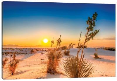 White Sands Lovely Sunset Canvas Art Print