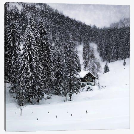 Bavarian Winters Tale IX Canvas Print #MEV382} by Melanie Viola Canvas Art Print
