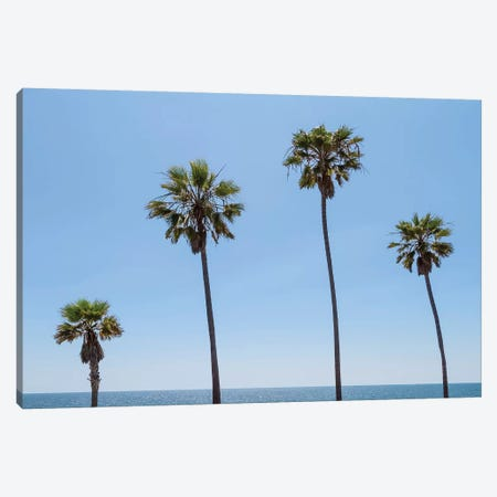 Palm Trees By The Sea Canvas Print #MEV397} by Melanie Viola Canvas Art Print