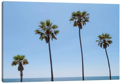 Palm Trees By The Sea Canvas Art Print