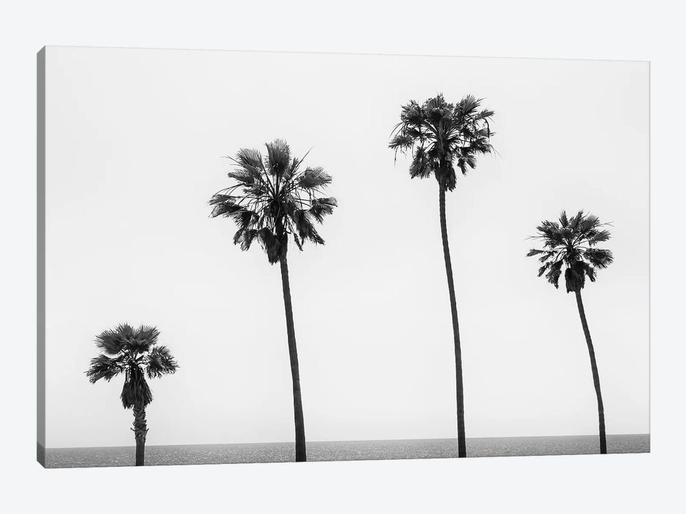 Palm Trees By The Sea | Monochrome 1-piece Canvas Art Print
