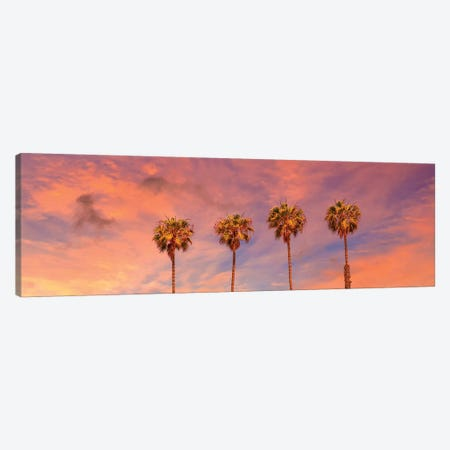 Palm Trees Sunset | Panoramic View Canvas Print #MEV414} by Melanie Viola Canvas Artwork