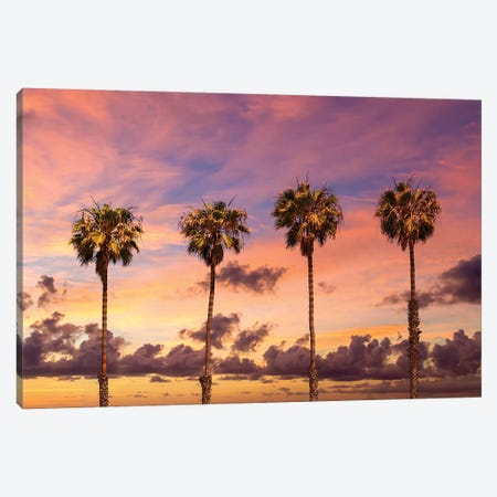 Palm Trees Sunset Canvas Print #MEV426} by Melanie Viola Art Print