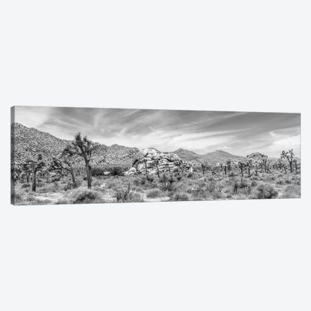 Scenic Monochrome Panorama - Joshua Tree National Park Canvas Print #MEV430} by Melanie Viola Art Print
