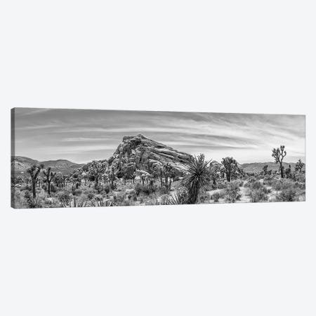 Monzogranite Formation - Monochrome Joshua Tree National Park Canvas Print #MEV433} by Melanie Viola Canvas Print