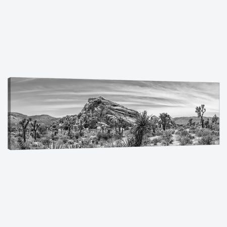 Monzogranite Formation - Monochrome Joshua Tree National Park Canvas Print #MEV433} by Melanie Viola Canvas Print