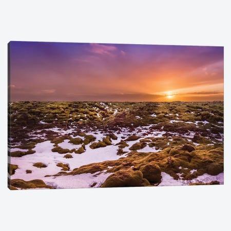 Iceland Skaftáreldahraun Lava Field Canvas Print #MEV478} by Melanie Viola Art Print