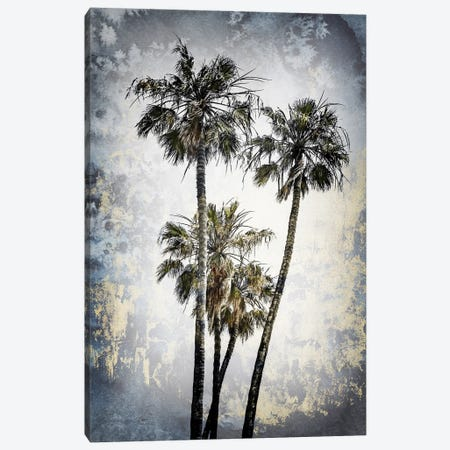 Modern Art Lovely Palm Trees Canvas Print #MEV514} by Melanie Viola Canvas Art Print