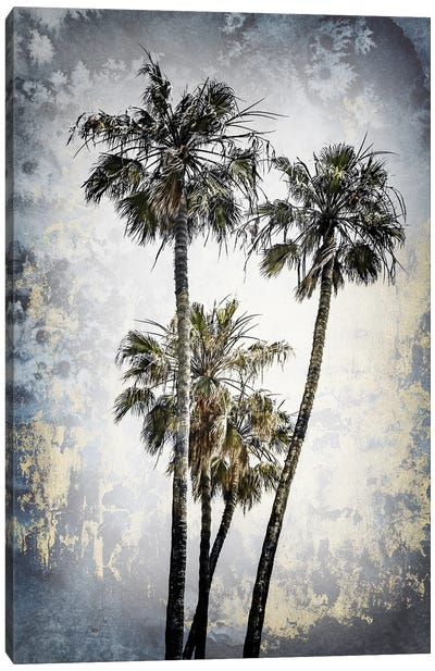 Modern Art Lovely Palm Trees Canvas Art Print