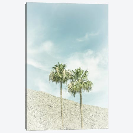 Palm Trees In The Desert   Vintage Canvas Print #MEV520} by Melanie Viola Canvas Print