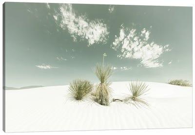 White Sands Vintage Canvas Art Print