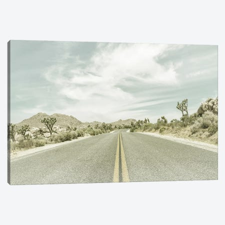Vintage Joshua Trees And Country Road Canvas Print #MEV530} by Melanie Viola Canvas Artwork
