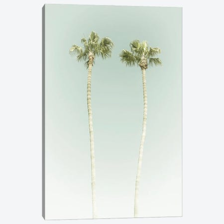 Vintage Palm Trees Canvas Print #MEV533} by Melanie Viola Canvas Artwork