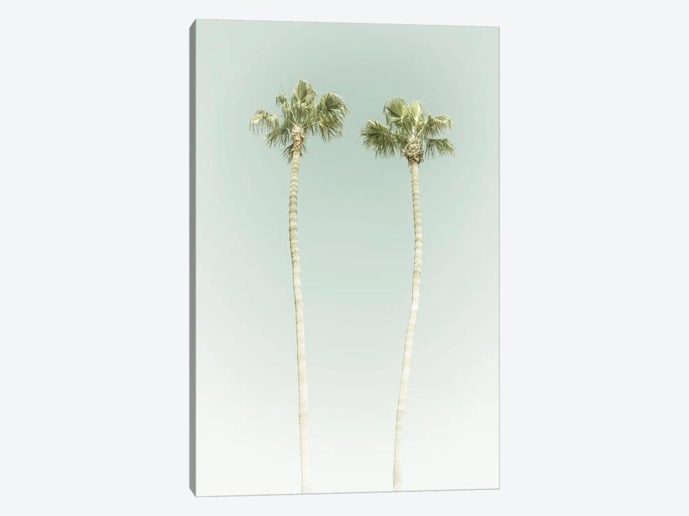Vintage Palm Trees by Melanie Viola 1-piece Canvas Wall Art
