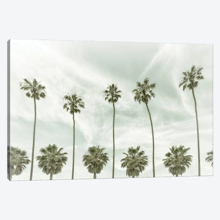 La Jolla Vintage Palm Trees Canvas Print #MEV534} by Melanie Viola Canvas Art Print