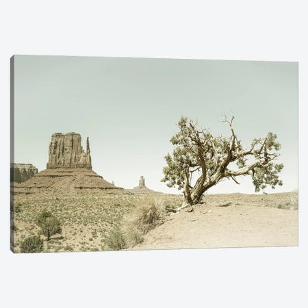 Monument Valley West Mitten Butte And Tree | Vintage Canvas Print #MEV536} by Melanie Viola Canvas Print