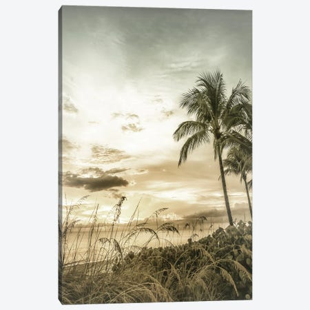 Bonita Beach Bright Sunset | Vintage Canvas Print #MEV537} by Melanie Viola Art Print