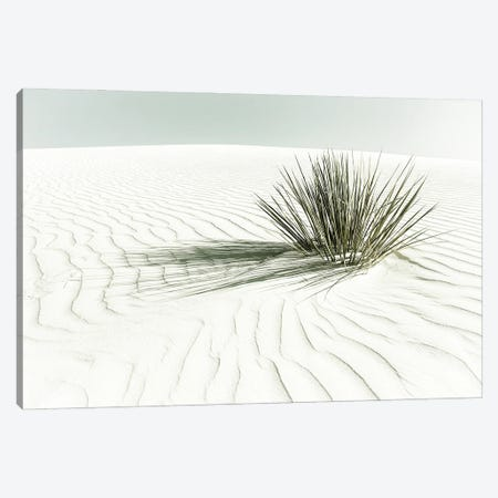 White Sands Dune | Vintage Canvas Print #MEV542} by Melanie Viola Canvas Art Print