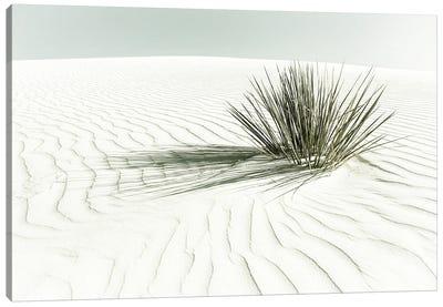 White Sands Dune | Vintage Canvas Art Print