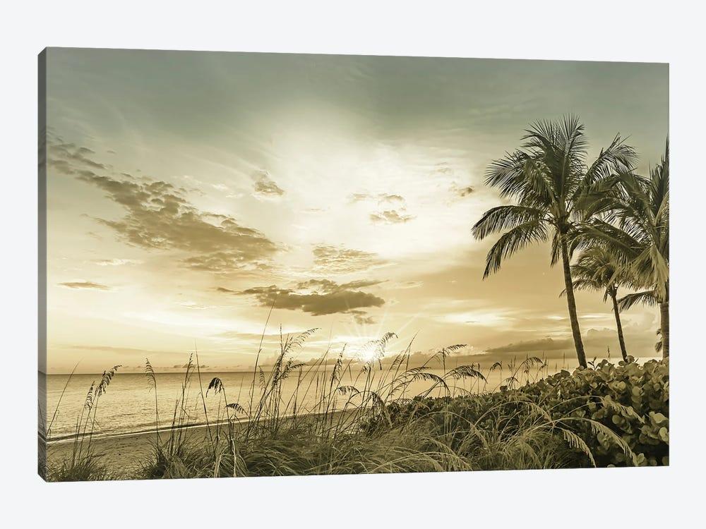 Bonita Beach Sunset by Melanie Viola 1-piece Canvas Print