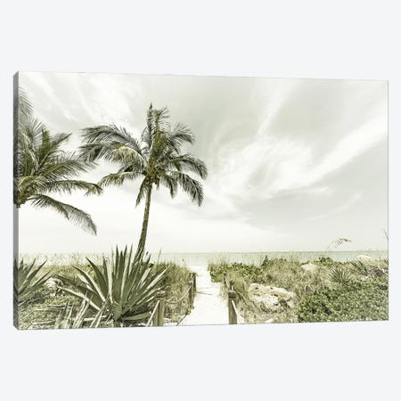 Alone At The Beach Canvas Print #MEV582} by Melanie Viola Art Print