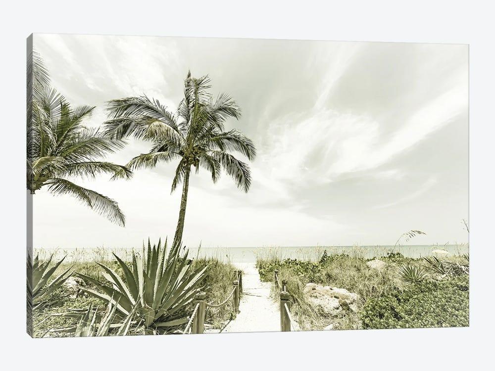 Alone At The Beach by Melanie Viola 1-piece Canvas Art