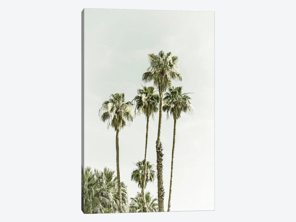 Palm Trees Summertime by Melanie Viola 1-piece Canvas Artwork