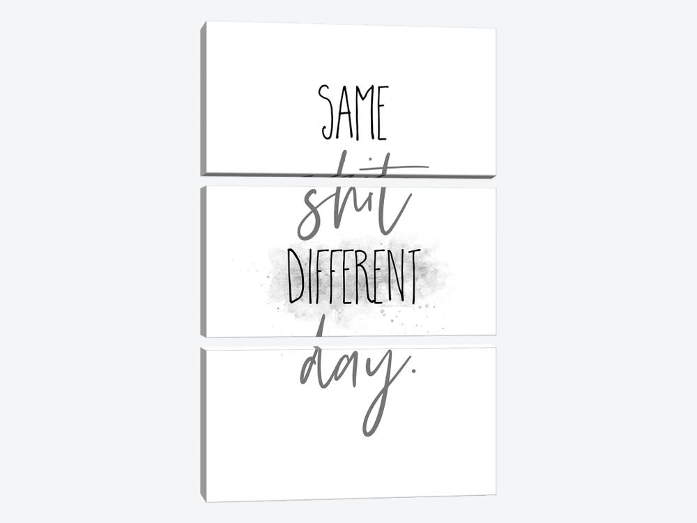 Same Shit Different Day I by Melanie Viola 3-piece Canvas Print