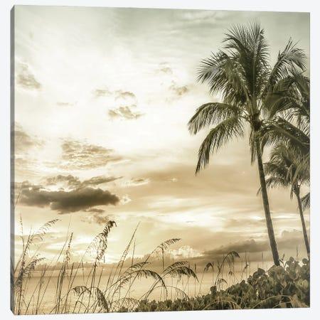 Bright Vintage Sunset At Bonita Beach Canvas Print #MEV638} by Melanie Viola Canvas Print