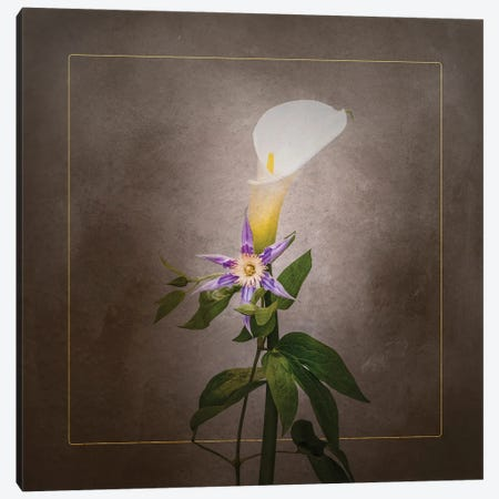 Graceful Flowers - Calla And Clematis   Vintage Style Gold Canvas Print #MEV742} by Melanie Viola Art Print