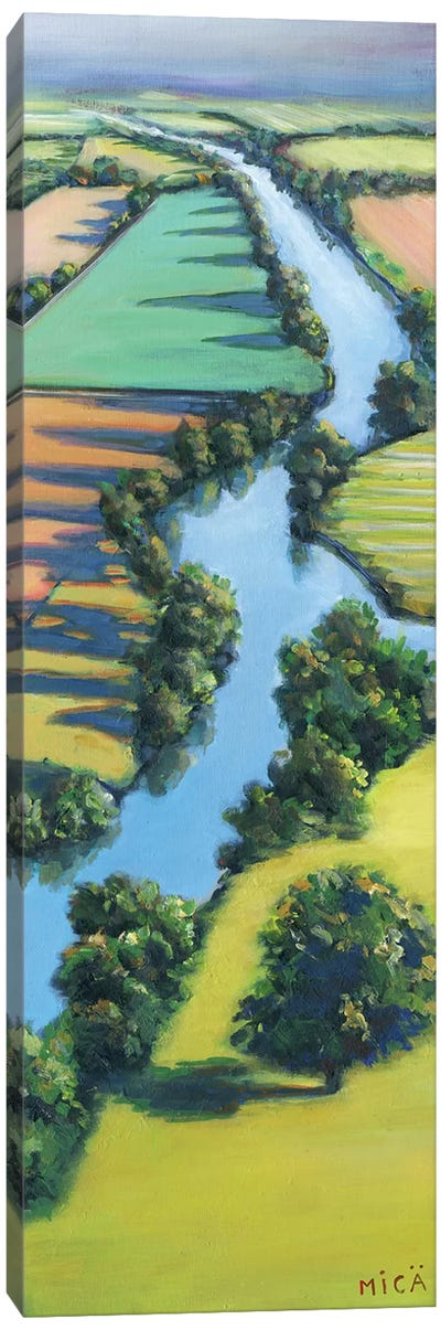 Flying Above I Canvas Art Print