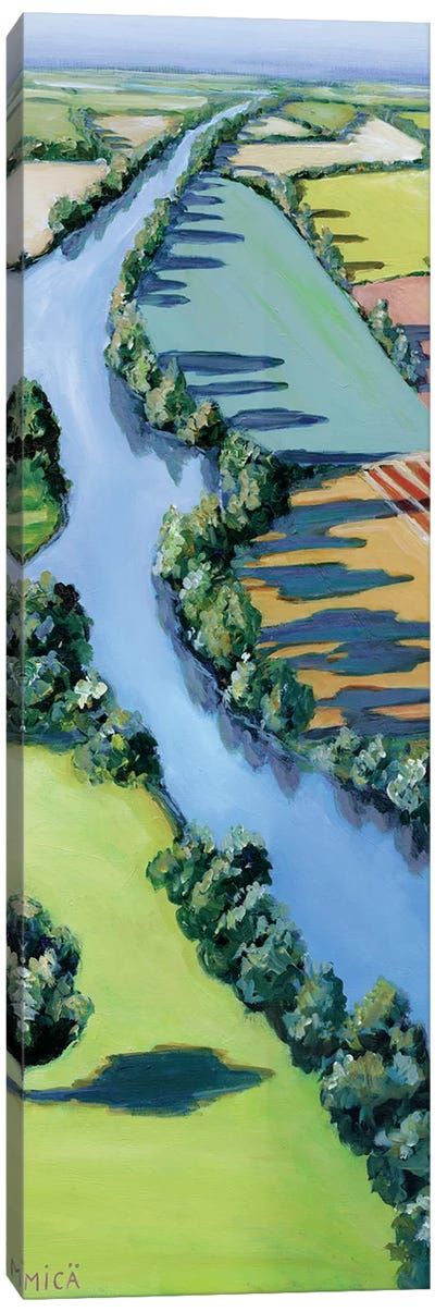 Flying Above II Canvas Art Print