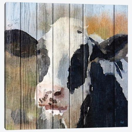 Sweet Daisy I Canvas Print #MEZ22} by Andi Metz Canvas Art