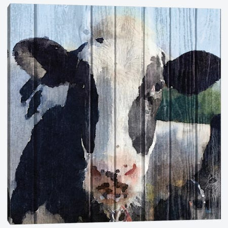 Sweet Daisy II Canvas Print #MEZ23} by Andi Metz Canvas Artwork