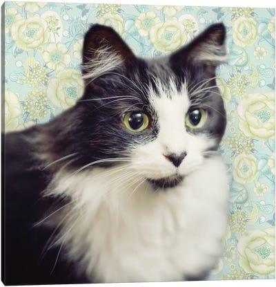 Cat on Paisley Canvas Art Print
