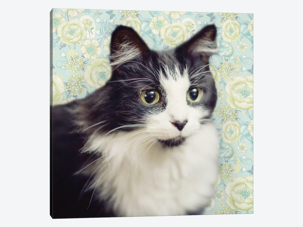 Cat on Paisley by Andi Metz 1-piece Canvas Art Print