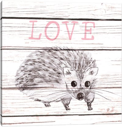 Hedgehog Love Canvas Art Print