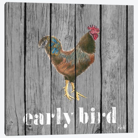 Early Bird Rooster Canvas Print #MEZ8} by Andi Metz Canvas Wall Art