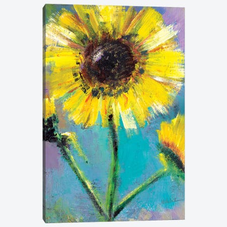 Sunflowers Canvas Print #MFE23} by Michele Pulver Feldman Art Print