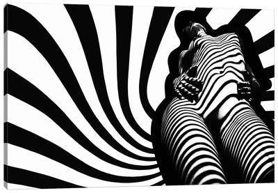 Zebra Absorption Canvas Art Print