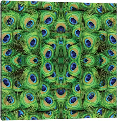 Peacock Kaleidoscope Canvas Art Print