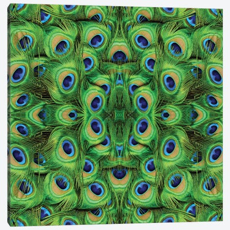 Peacock Kaleidoscope Canvas Print #MFZ72} by Michael Fitzsimmons Canvas Print