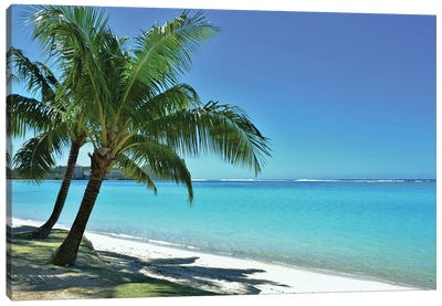 Tropical Beach Scene And Palm Tree Canvas Art Print