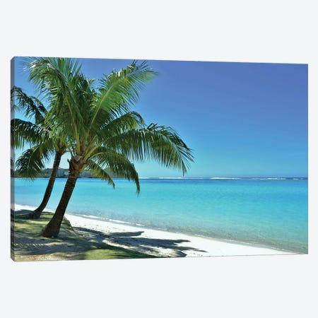 Tropical Beach Scene And Palm Tree Canvas Print #MFZ75} by Michael Fitzsimmons Canvas Artwork