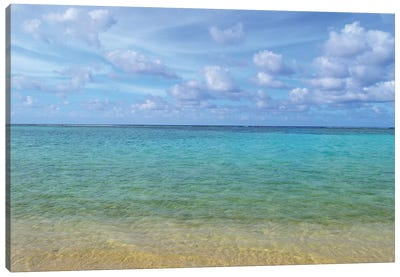 Tropical Beach And Ocean Canvas Art Print