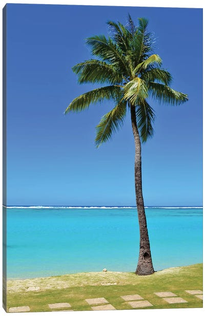 Tropical Beach Scene With Palm Tree And Steps Canvas Art Print